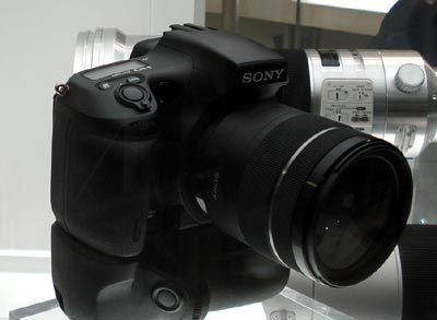 DSC05140.jpg
