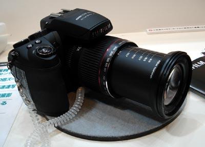 DSC05202.jpg